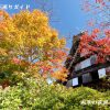 下呂温泉合掌村の紅葉