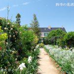 浜名湖ガーデンパークのバラ